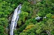 40 Minute Deluxe Reef and Rainforest Helicopter Flight -