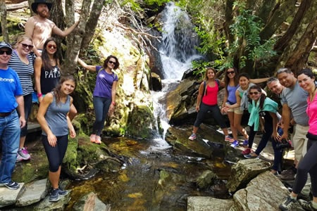 5 Day Famous Five Tour Launceston to Launceston - Bushwalking, Nature & Wildlife