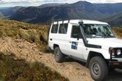 Best of the Blue Mountains 4WD Tour -
