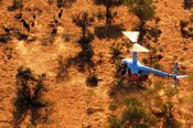90 Minute Scenic Flight to Kings Creek Station -
