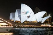 Vivid Sydney Dinner and Drinks Cruise -