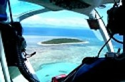 Helicopter Flight and Cruise to Green Island -