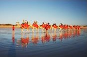 Afternoon Camel Ride along Cable Beach -