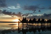 Sunset Camel Ride along Cable Beach -