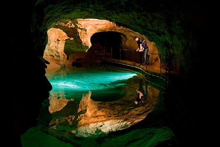 Jenolan Caves and Blue Mountains Day Tour - Bushwalking, Nature & Wildlife
