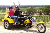 1.5 Hour Barossa Valley Chopper Cruise Trike Tour - Motorcycle