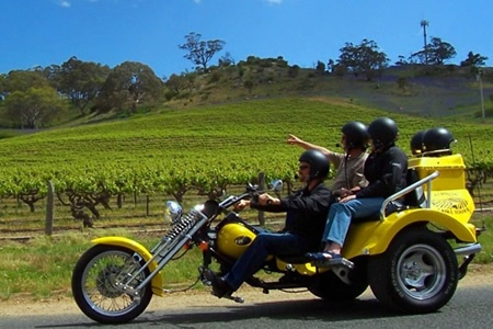 1.5 Hour Barossa Valley Sightseeing Chopper Cruise Trike Tour - Motorcycle