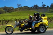 1.5 Hour Barossa Valley Chopper Cruise Trike Tour -