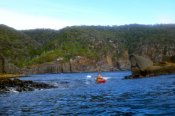 Tasman Peninsula Kayak Day Tour -