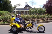 Half Day Uncut Barossa Valley Trike Tour - Motorcycle