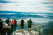 Mount Wellington and Tassie Devils Little BIG Ticket Tour -