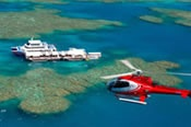 Scenic Flight and Moore Reef Half Day Tour - Fly / Fly -
