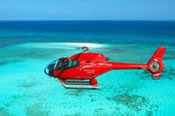Scenic Flight and Moore Reef Full Day Tour - Cruise / Fly -