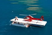 Scenic Flight and Moore Reef Full Day Tour - Cruise / Fly / Cruise -