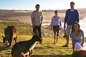 3 Day Kangaroo Island Food, Wine and Wilderness -
