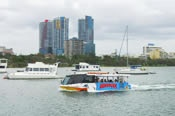 Aquaduck Land and Water Cruise -