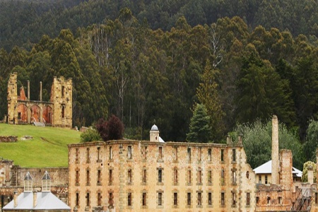 Port Arthur and Lavender Day Tour -