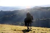 Blue Mountains Horse Riding Getaway with Bed and Breakfast -