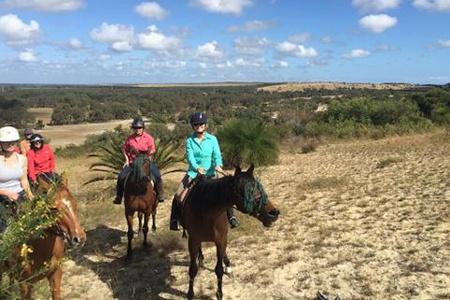 2 Hour Avanced Horse Ride with a View -