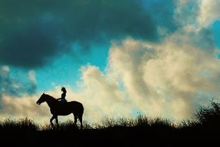 2 Hour Summer Twilight Horse Ride -