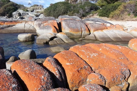 Bay of Fires Day Tour -