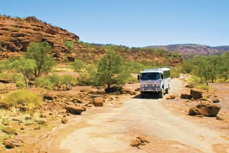 Palm Valley Outback Safari by 4WD -