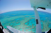 Reef Adventure Scenic Seaplane Tour - Seaplane