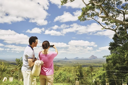 Sunshine Coast and Noosa Private Day Tour - Bushwalking, Nature & Wildlife