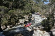 Mitta Mitta Gorge Wilderness and Whitewater Adventure - Melbourne CBD