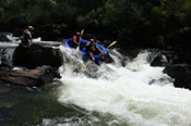 Lower Mitta Mitta Summer Sports Rafting Adventure - White Water Rafting