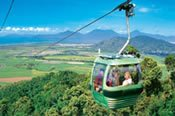 Kuranda Rainforest -