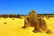Pinnacles Desert with 4WD Sandboarding Adventure, Koalas and Kangaroos -