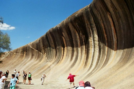 Wave Rock, York, Wildflowers and Aboriginal Culture Tour - Bushwalking, Nature & Wildlife