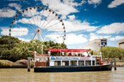 Grand Brisbane Day Tour -