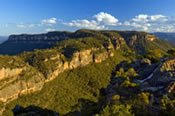 Blue Mountains and Wildlife Experience -