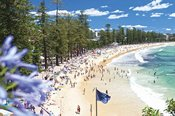 Manly Sights and Northern Beaches Morning Tour -