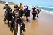 Horse Riding Beach Trail Ride -