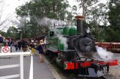 Puffing Billy with Blue Dandenongs -