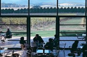 Yarra Valley Wineries -