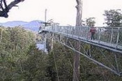 Huon Valley and Tahune Forest Airwalk -