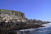 Bruny Island Wilderness Coast Full Day Tour -