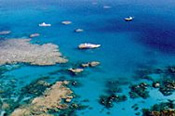 Scenic Flight and Outer Barrier Reef Day Tour - Cruise / Fly -
