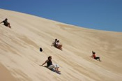Dolphin Watch Cruise and Sandboarding 4WD Tour Combo -