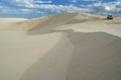 Whale Watch Cruise With Beach and Dune 4WD Tour Combo -