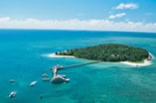 Green Island Half Day Reef Cruise -