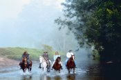 Guided Horse Riding Adventure - Horse Riding