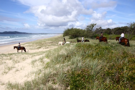 Private Beach Horse Riding in Noosa - Horse Riding