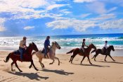 7 Day Noosa Heads Horse Riding Getaway - Horse Riding