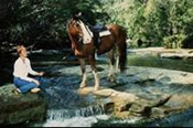 Lead Ponie Horse Riding -