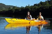 Guided Kayak Adventure -